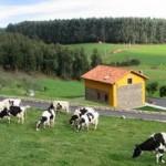 Alojamientos rurales Casa Jesusa